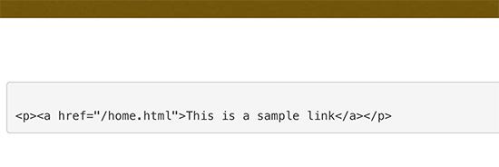 Mostrar código manualmente en WordPress