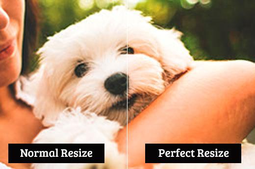 Comparación entre el cambio de tamaño normal y el cambio de tamaño perfecto