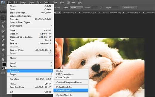 Abrir una imagen en Perfect Resize desde Adobe Photoshop