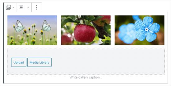 Tres imágenes en la galería (mariposas, manzanas y flores azules)