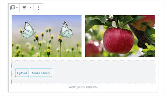 Dos imágenes en la galería (mariposas y manzana)