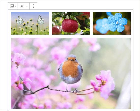 Cuatro imágenes en la galería (mariposas, manzana, flores azules y petirrojo)