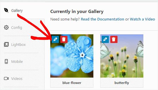 Haga clic en el botón Editar para editar una imagen en su galería.