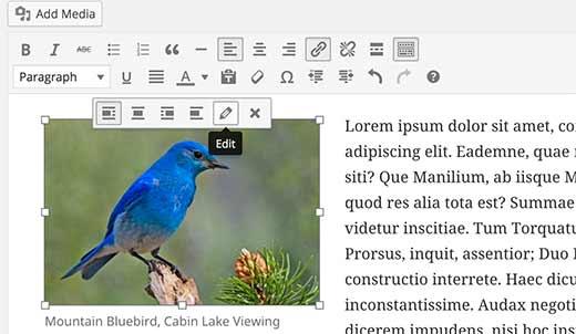 Editar una imagen en WordPress