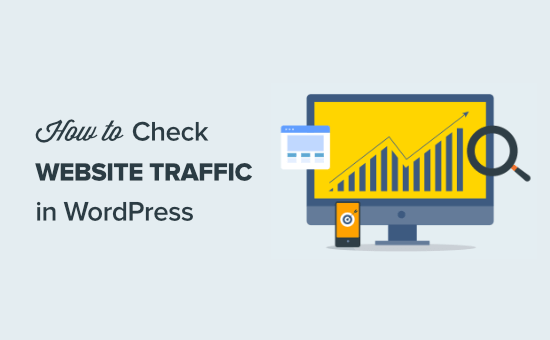 How to check website traffic for any site (7 tools)